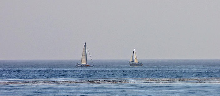 Long Beach Sailboats