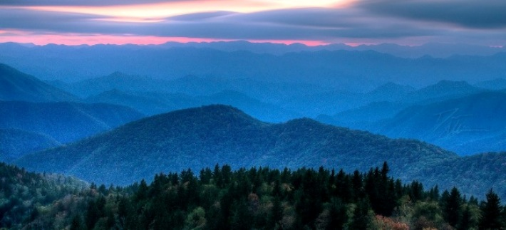 Blue Ridge Chapter of Virginia